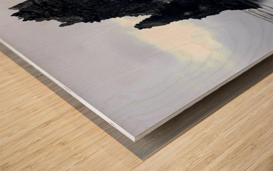 Hvitserkur Wood print