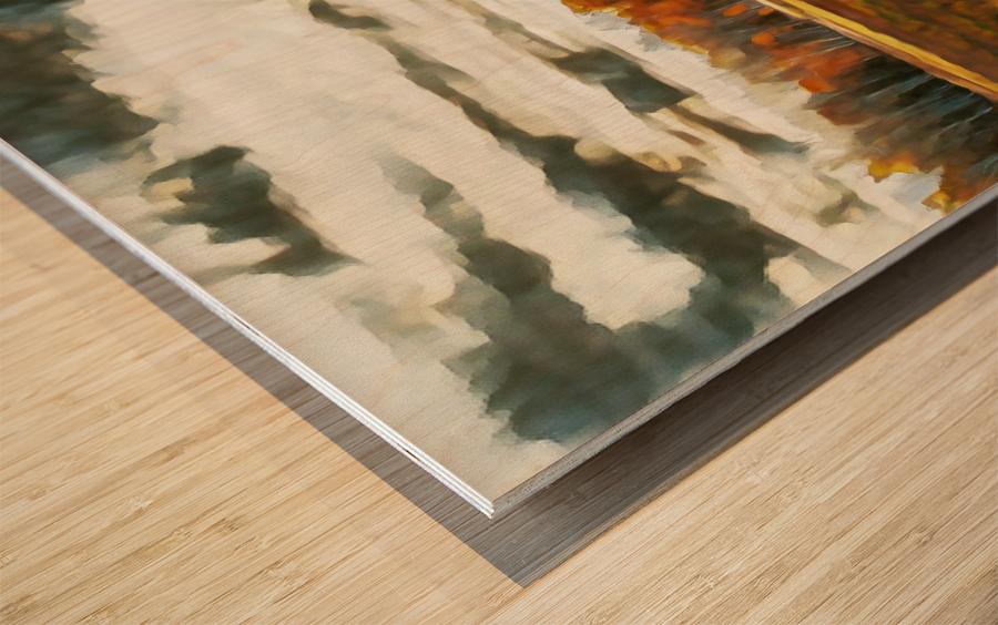 barn um lisadrewphotos Wood print