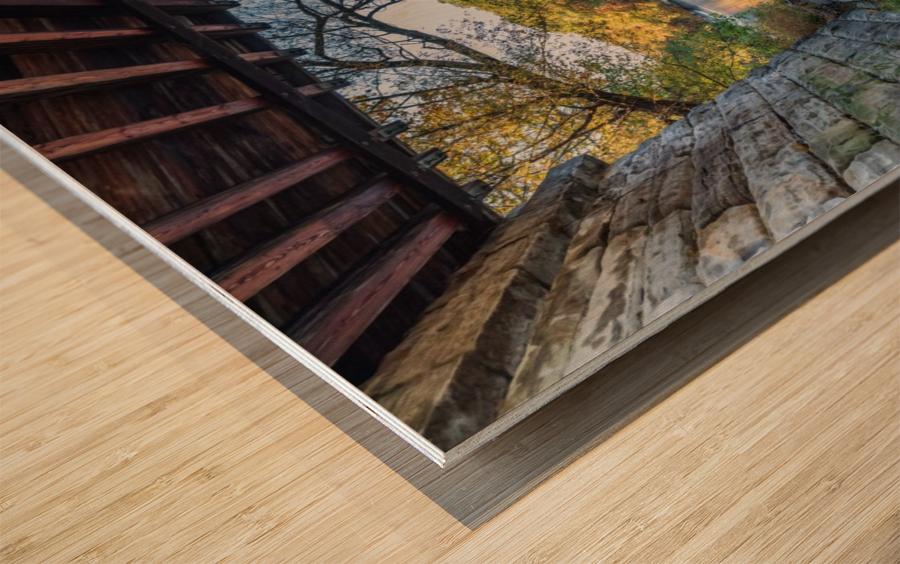 Grand River at Mechanicsville Ohio Wood print