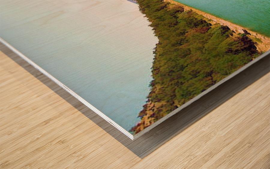 Utah Lake Wood print