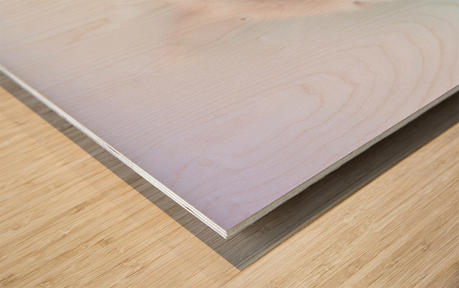 catshadow Wood print