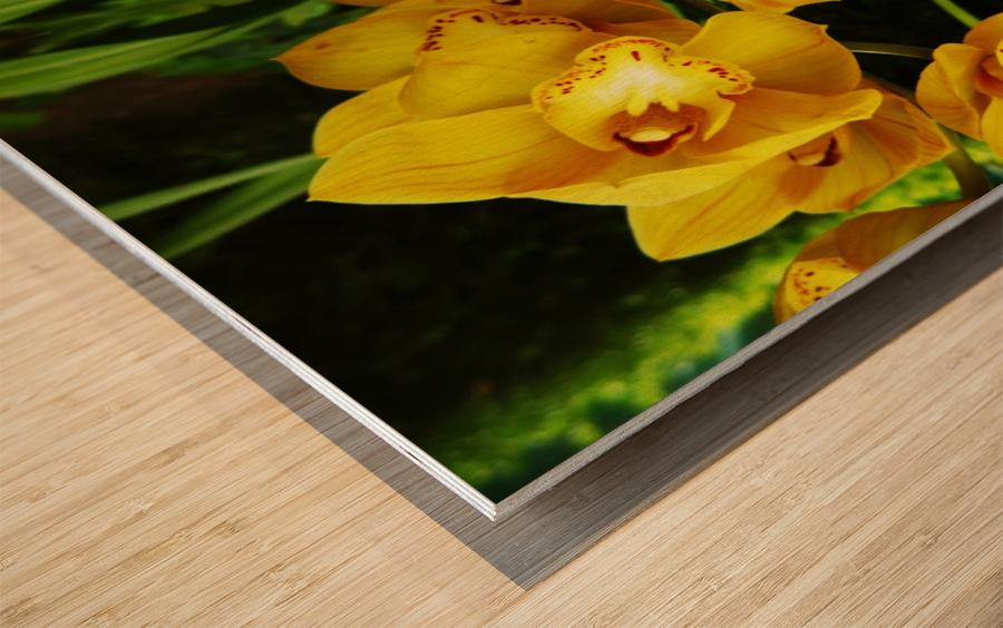 flower65 Wood print