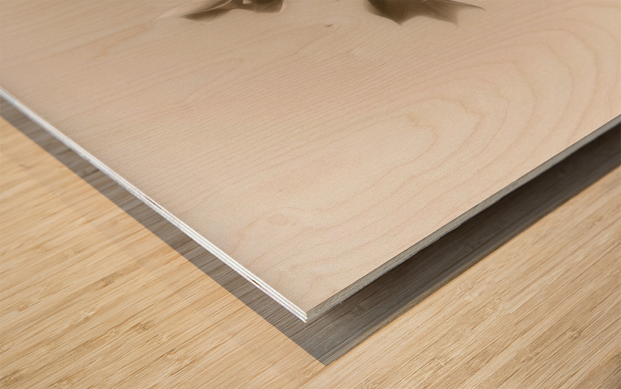 Symphony Wood print