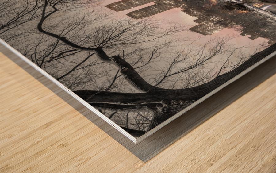 Central park with Manhattan skyline, New York Wood print