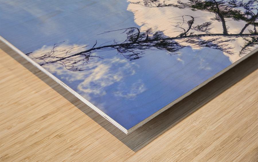 The Cascades Wood print