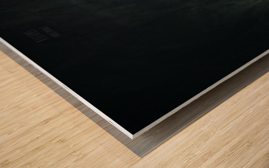 Zen 3b Wood print