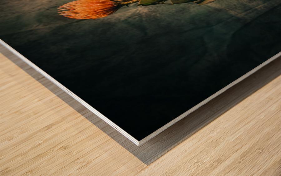 Zen 2 Wood print