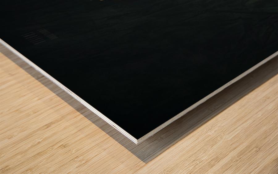 Zen 1 Wood print