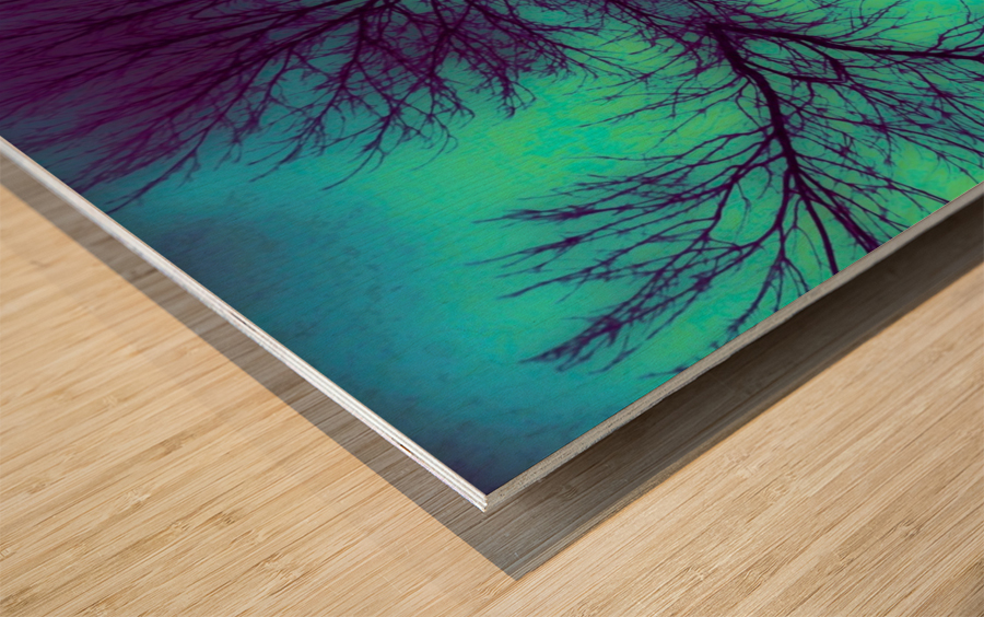 Portal  4  Wood print