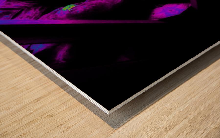 Portal  106  Wood print