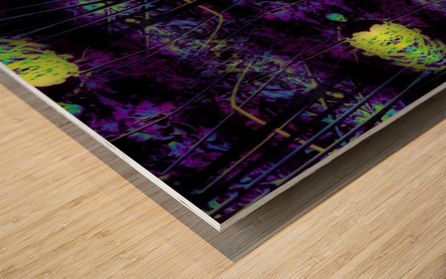 Portal  47  Wood print