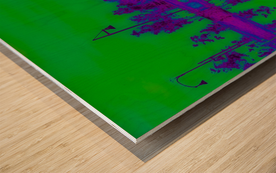 Portal  96  Wood print