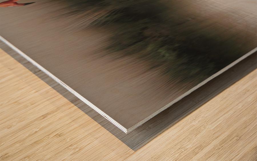 ... Wood print