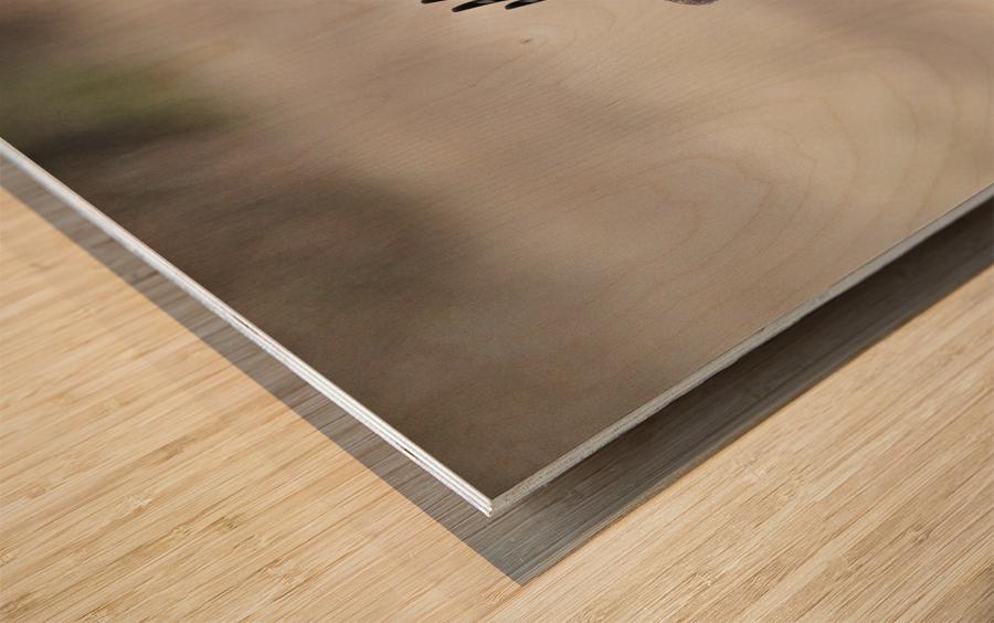 Wesley Allen Shaw 02112 Wood print