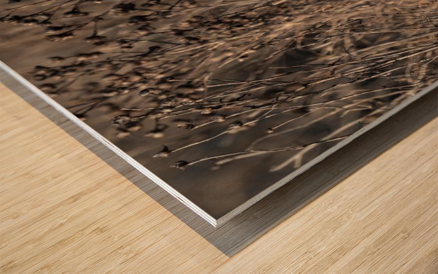 Wesley Allen Shaw 09496 Wood print