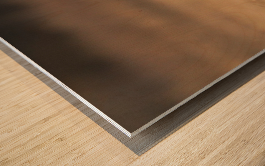 Wesley Allen Shaw 08720 Wood print