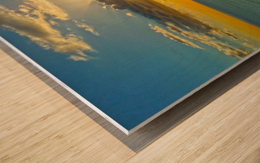 Island Dreamin Wood print
