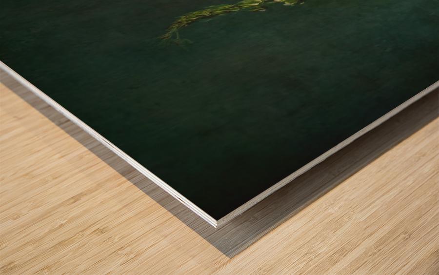 Etude Zen 3m Wood print