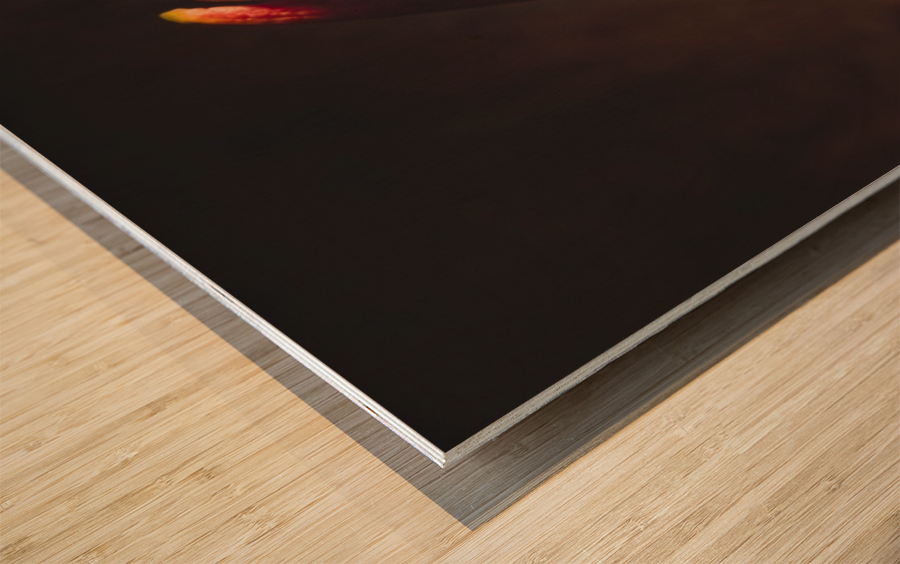 Etude Zen 3g Wood print