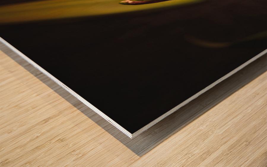Etude Zen 3h Wood print