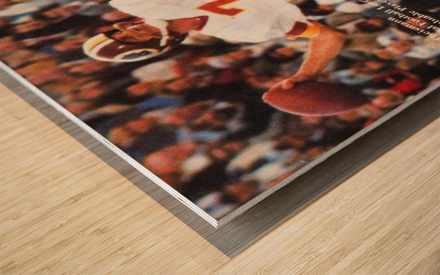 1983 Washington Joe Theismann Poster Wood print