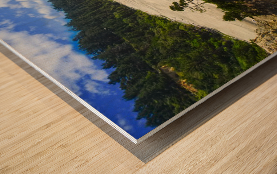 Wild Oregon Coast Wood print