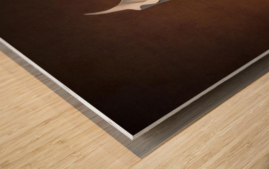 Etude Zen 7b Wood print