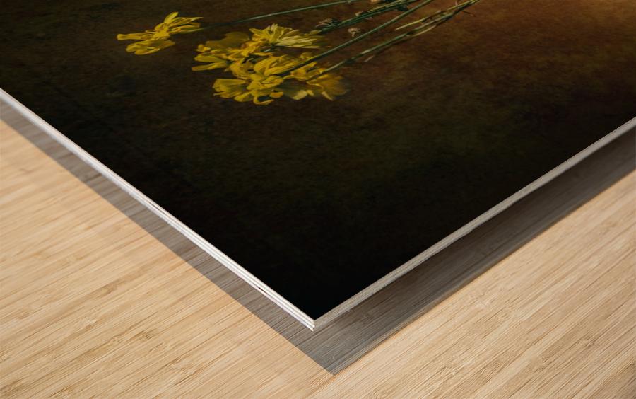 Etude Zen 7c Wood print