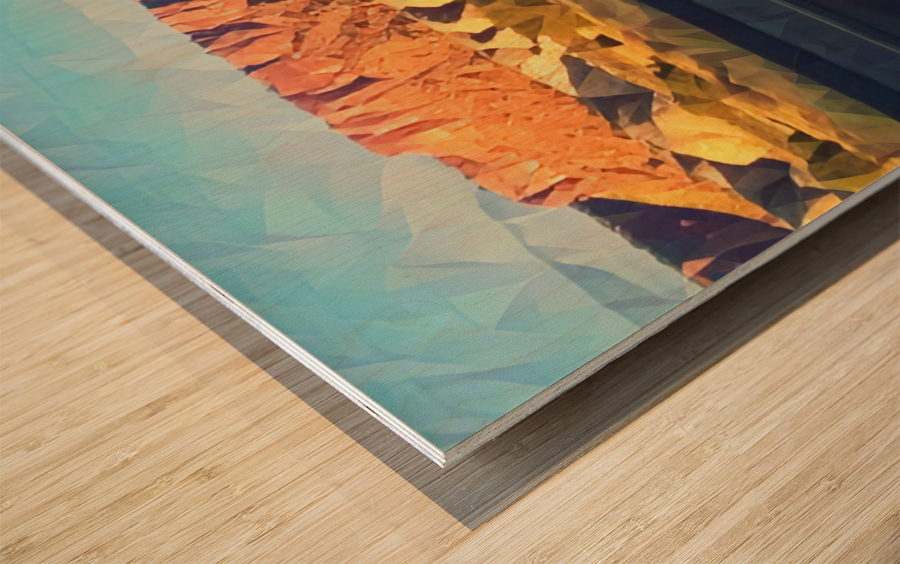 new mexico highway Wood print