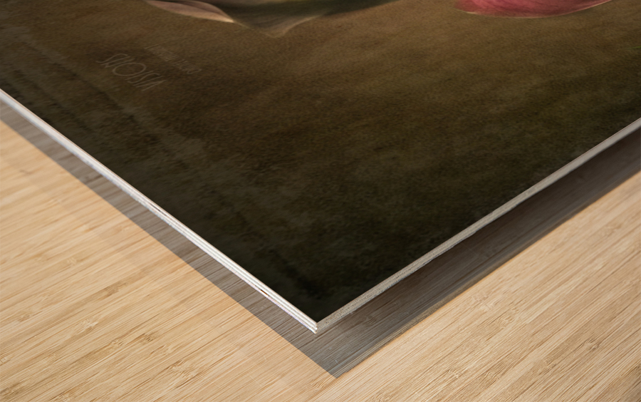 Etude Zen 8 a Wood print