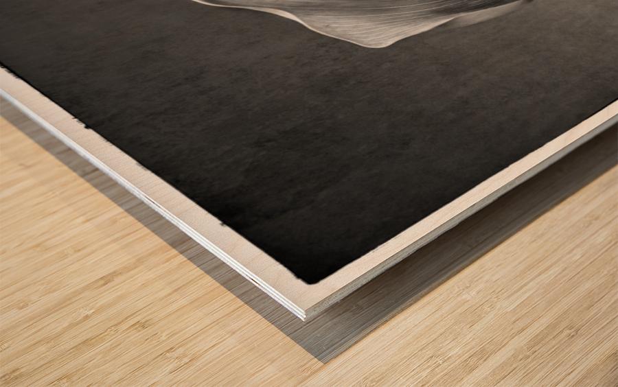 Etude Zen 8 c Wood print