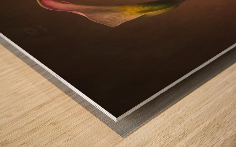 Etude Zen 8 d  Wood print