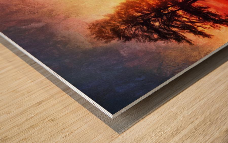 Backyard Wood print