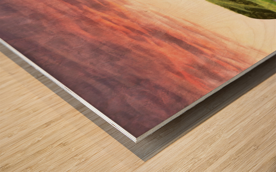 Coming Down Wood print