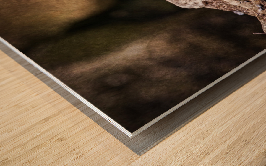 The Last Meal Wood print