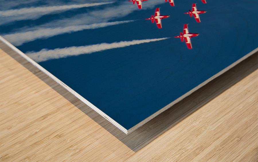 Snow Birds in Flight Wood print