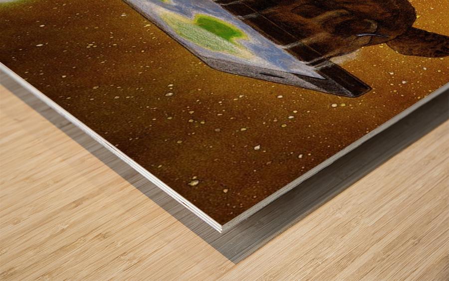 flat world Wood print