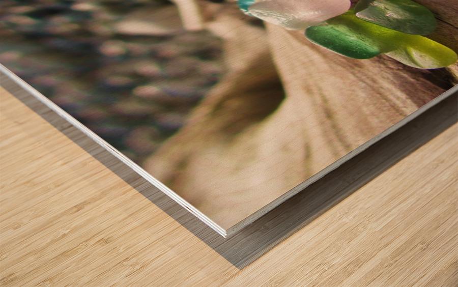 Sea Glass Colors Wood print