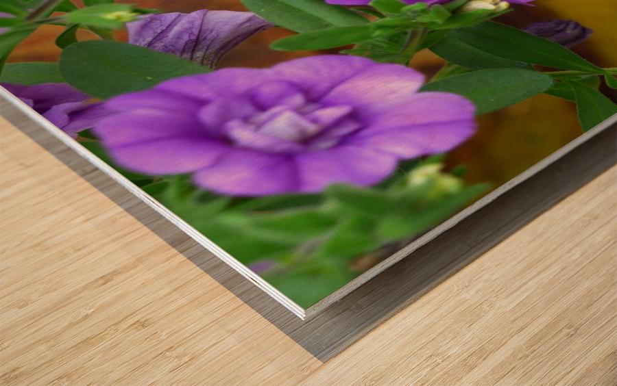 Purple Petals Wood print