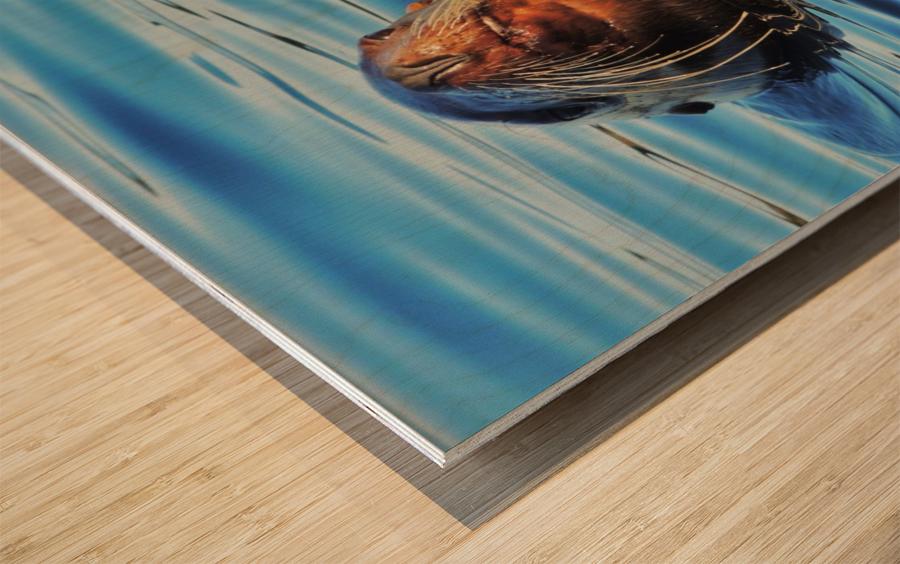 Serendipity Wood print