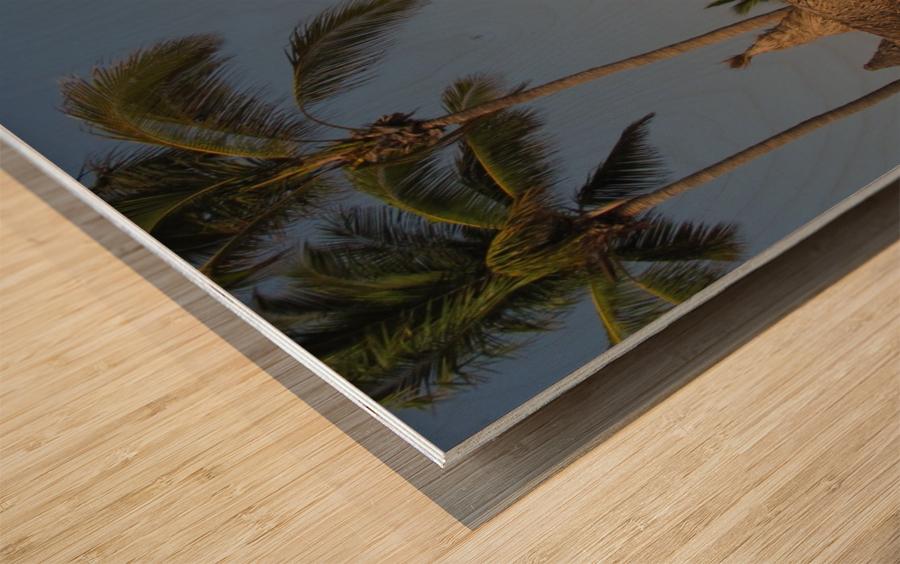 Mazatlan Resort Wood print