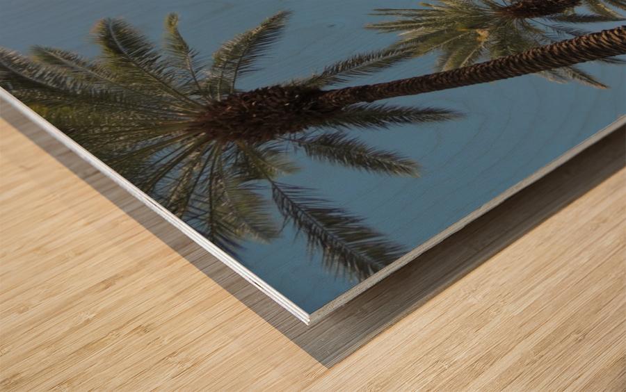 Date Garden Oasis Wood print