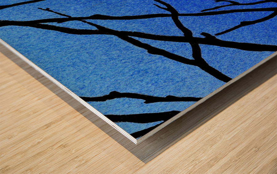 Ultramarine Forest Winter Blues II Wood print