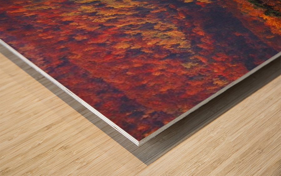 landscape_2_0441 Wood print