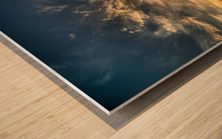 Water is Essential Wood print