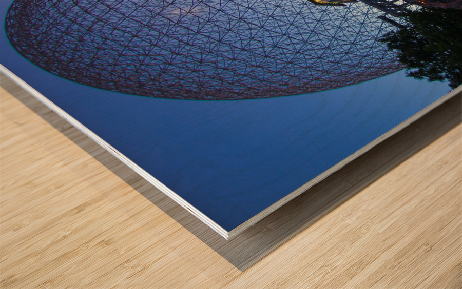 Reflections on Buckminster Wood print