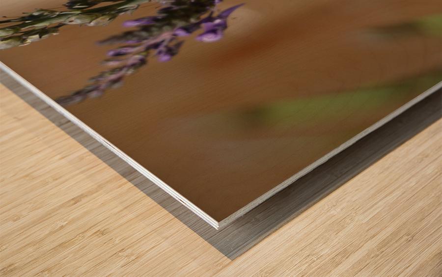 Bee Love Wood print