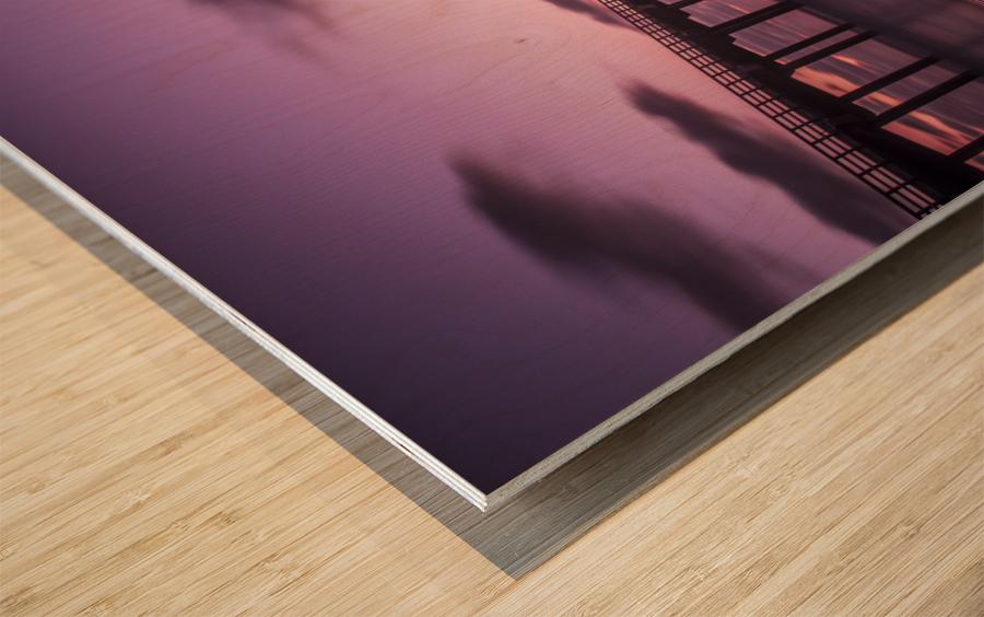 LaJolla Bridge Wood print