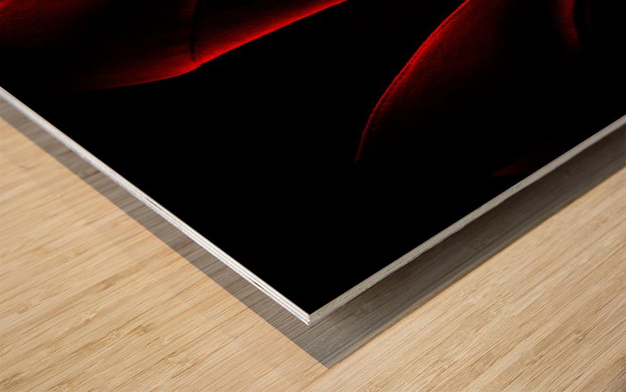 Shoe in Red Impression sur bois