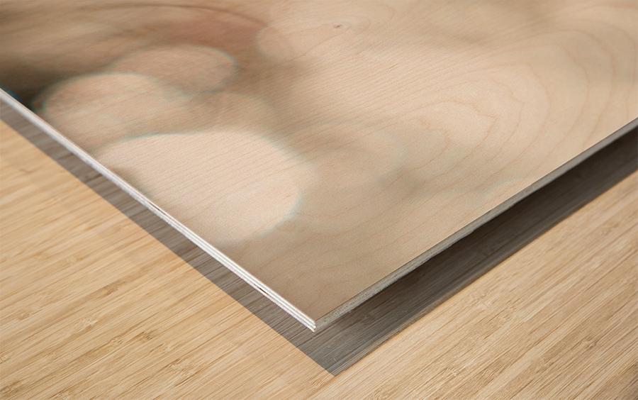 Hi Lite Wood print